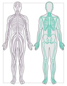 Wahrnehmungsübungen für den Körper